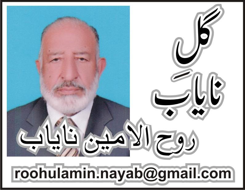 ڈاکٹر بدرالحکیم حکیم زے، اک تاثر