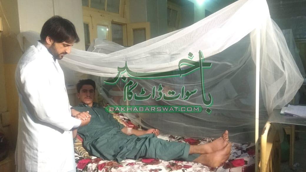 سوات میں ڈینگی مچھر کا وار جاری، مریضوں کی تعداد 55ہوگئی