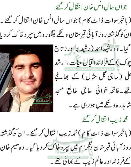 محمد زیب انتقال کر گئے/جواں سال انس خان انتقال کر گئے